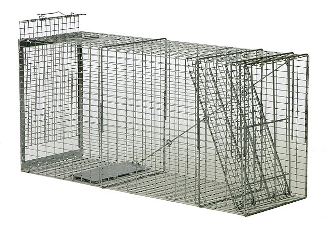 Dog Trap Professional Trap Used For Trapping Large Dogs